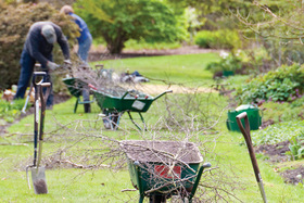 9 Tips to Prepare Your Garden for Winter